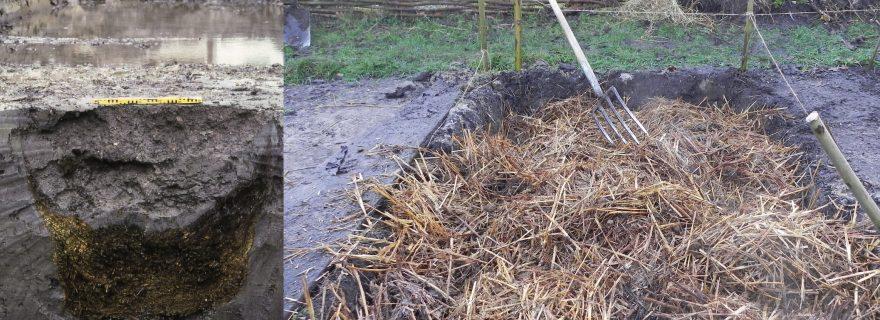 De broeibedhypothese: op zoek naar sporen van middeleeuwse tuinbouw