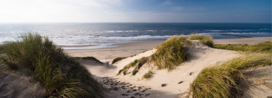 """Dune protection and """"environmental law"""" in late medieval Zeeland"""