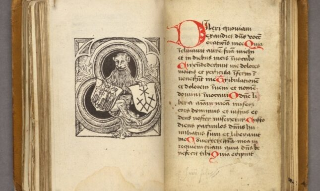 Fig 6 leeuw printed book