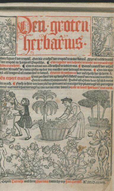 Blog fig 1 Herbarius 1538 titelblad