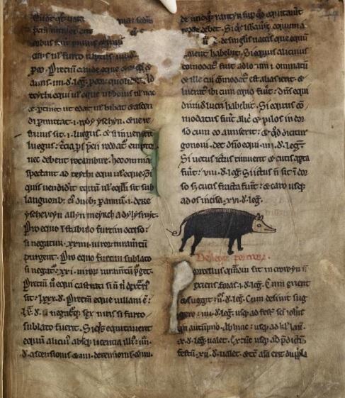 Image 3 Peniarth MS 28 f 60